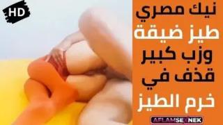 سكس الطيز الضيق موقع عرب اون لاين Videosarabic.com